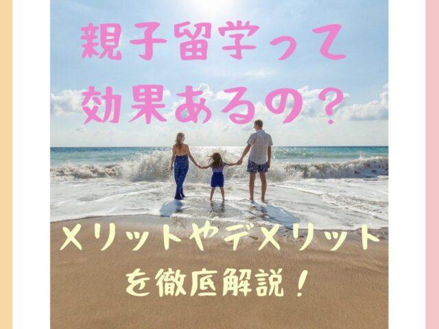 手をつないで砂浜を歩く親子の写真