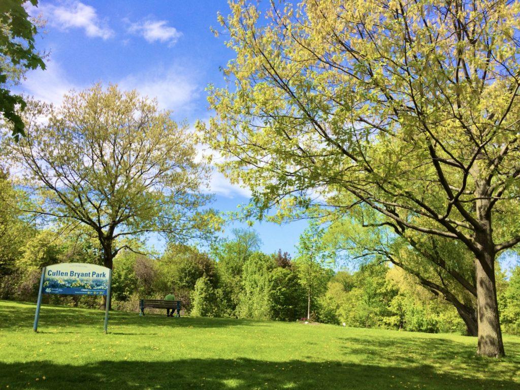青空と緑の木々が綺麗なトロントの公園の風景